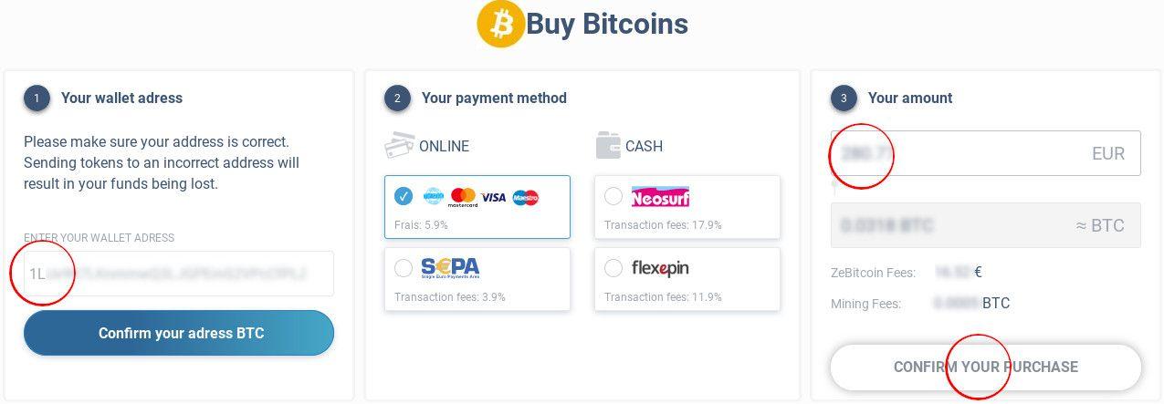 ZeBitcoin payment step